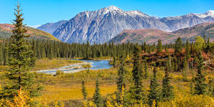 Denali National Park and Preserve (Photo:Uwe Bergwitz/Shutterstock)