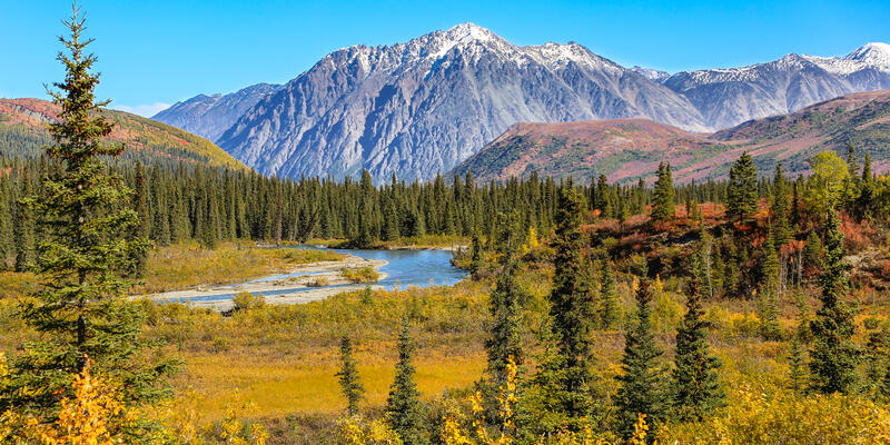 Denali National Park and Preserve (Photo:Uwe Bergwitz/Shutterstock)