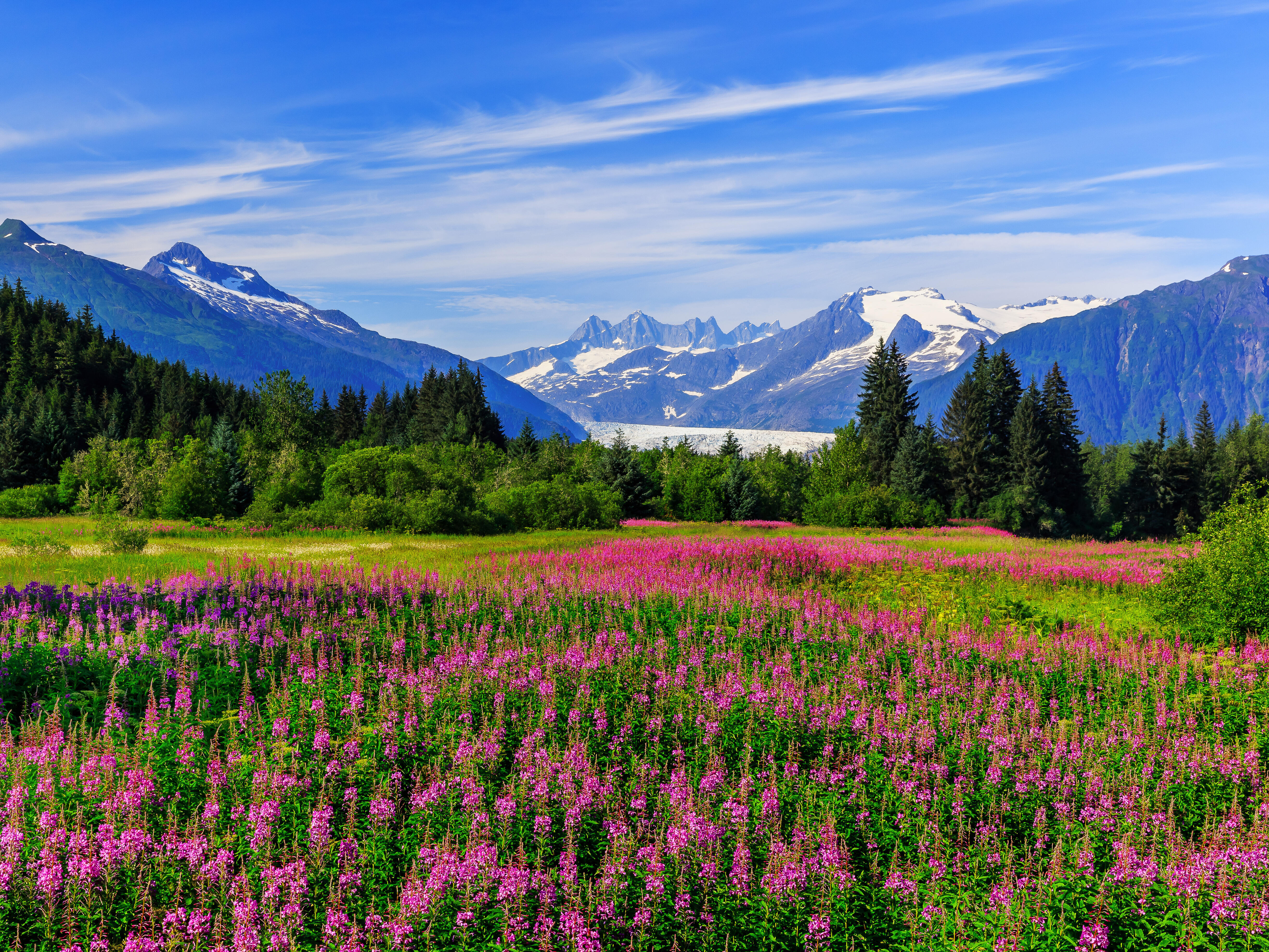 5 Best Alaska Cruises 2018 With Prices Cruises To Alaska On Cruise Critic