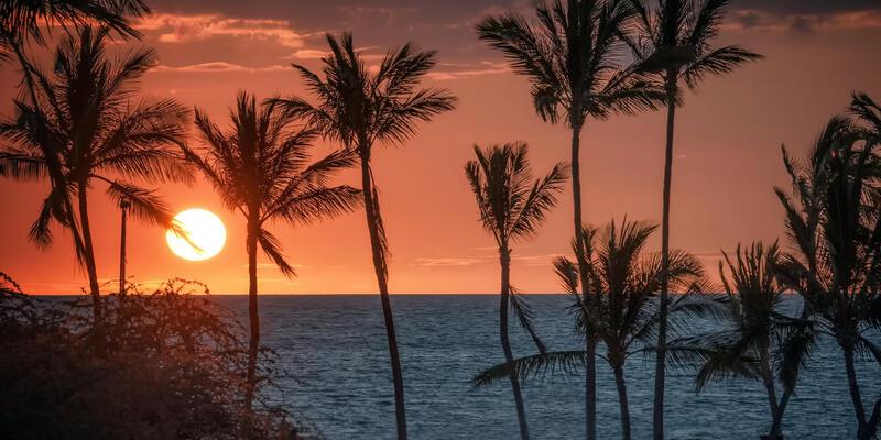 Kona (Photo:Ed-Ni Photo/Shutterstock)