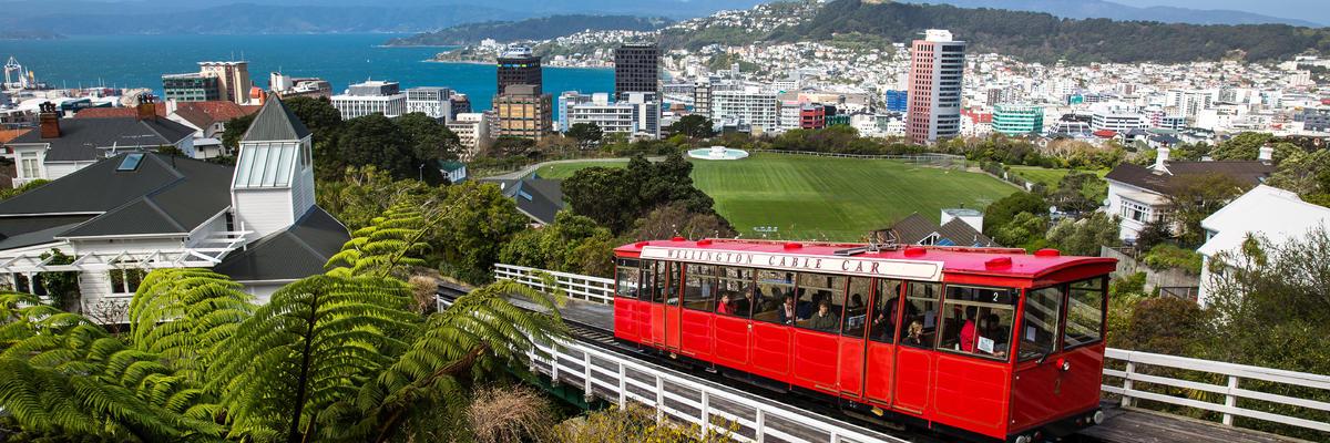 Wellington (Photo:Victor Maschek/Shutterstock)