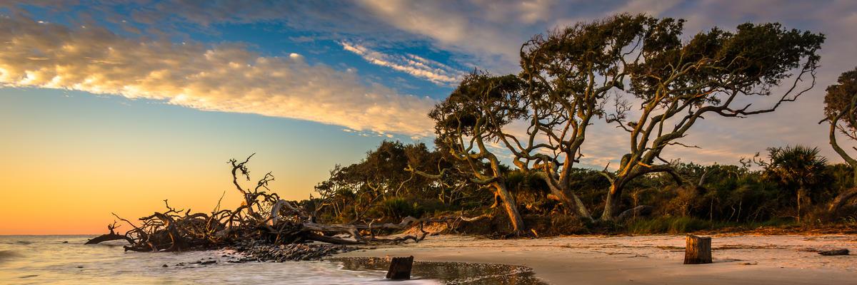 Jekyll Island (Photo: Jon Bilous/Shutterstock.com)