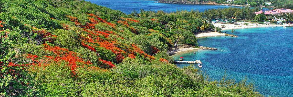 Pigeon Island, Saint Lucia (Photo: Angela N Perryman/Shutterstock)