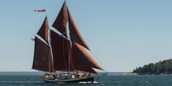 Angelique (Photo: Maine Windjammer Association)