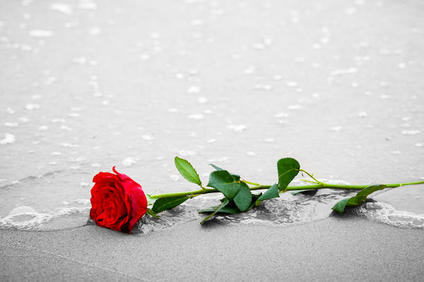 When a Passenger Dies at Sea: What You Need to Know  (Photo: PHOTOCREO Michal Bednarek/Shutterstock)