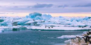 Antarctica (Photo:Alexey Suloev/Shutterstock)