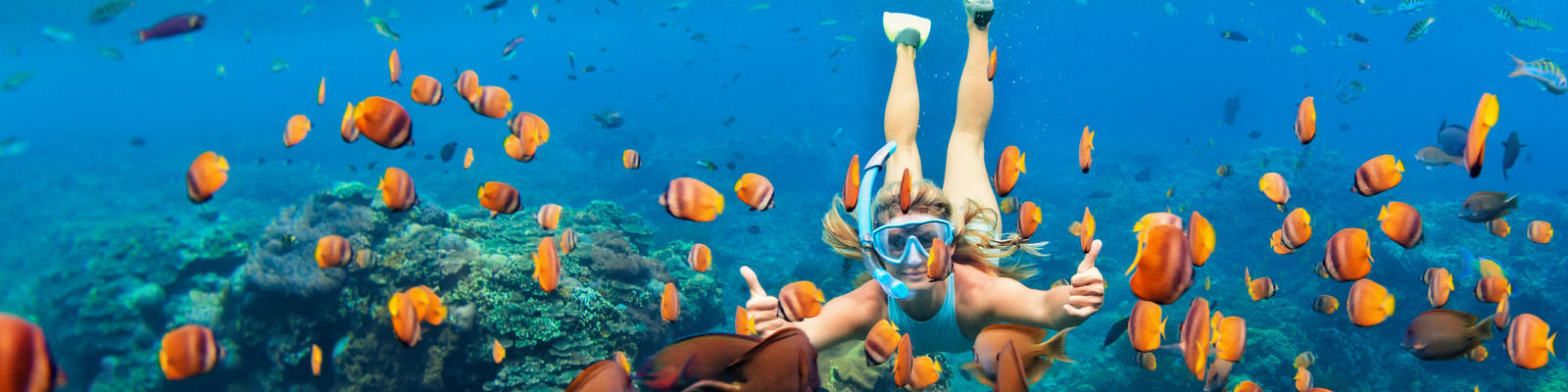 How to Prepare for a Snorkel and Dive Cruise (Photo: Tropical studio/Shutterstock.com)