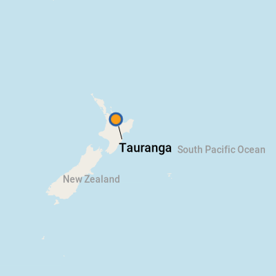 business report on port of tauranga Port companies spend millions on inland depots port of tauranga's set up its metroport inland port about the aurecon report was conservative in its.
